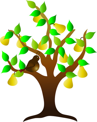 Clip Art Illustration of a Partridge in a Pear Tree at Encore ...