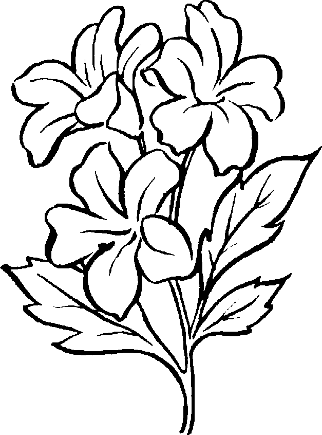 free clip art flowers black and white clipartsco