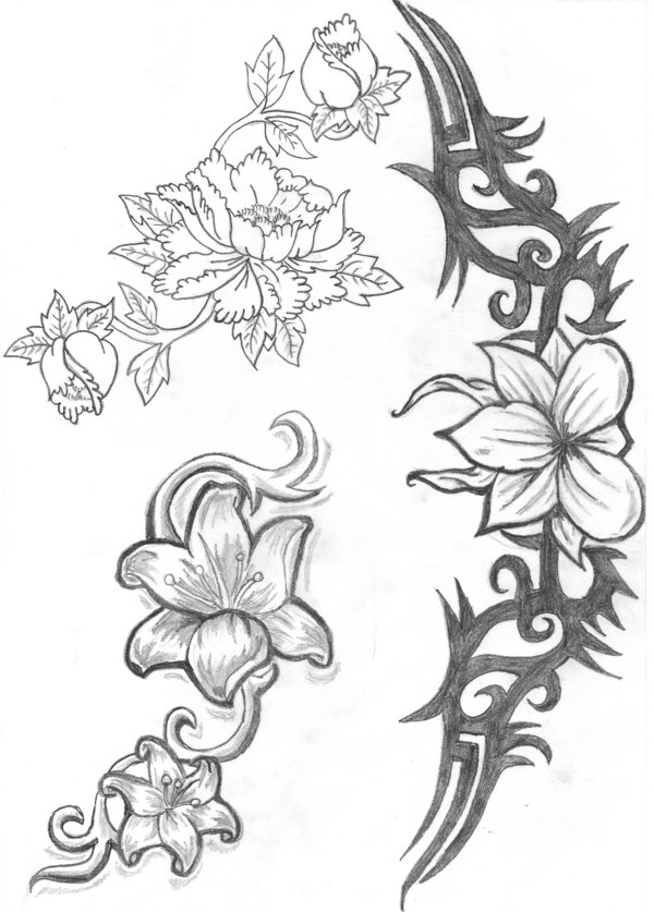 coloring pages flora unfastened