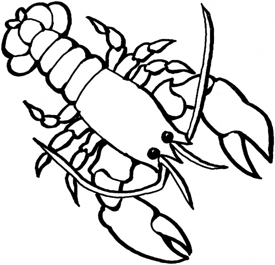 Lobster 2 | Clipart Panda - Free Clipart Images
