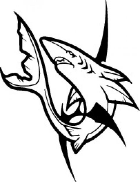 Line Art Shark : Shark line art cliparts