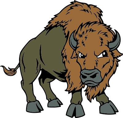 Bison mascot clipart - photo#3
