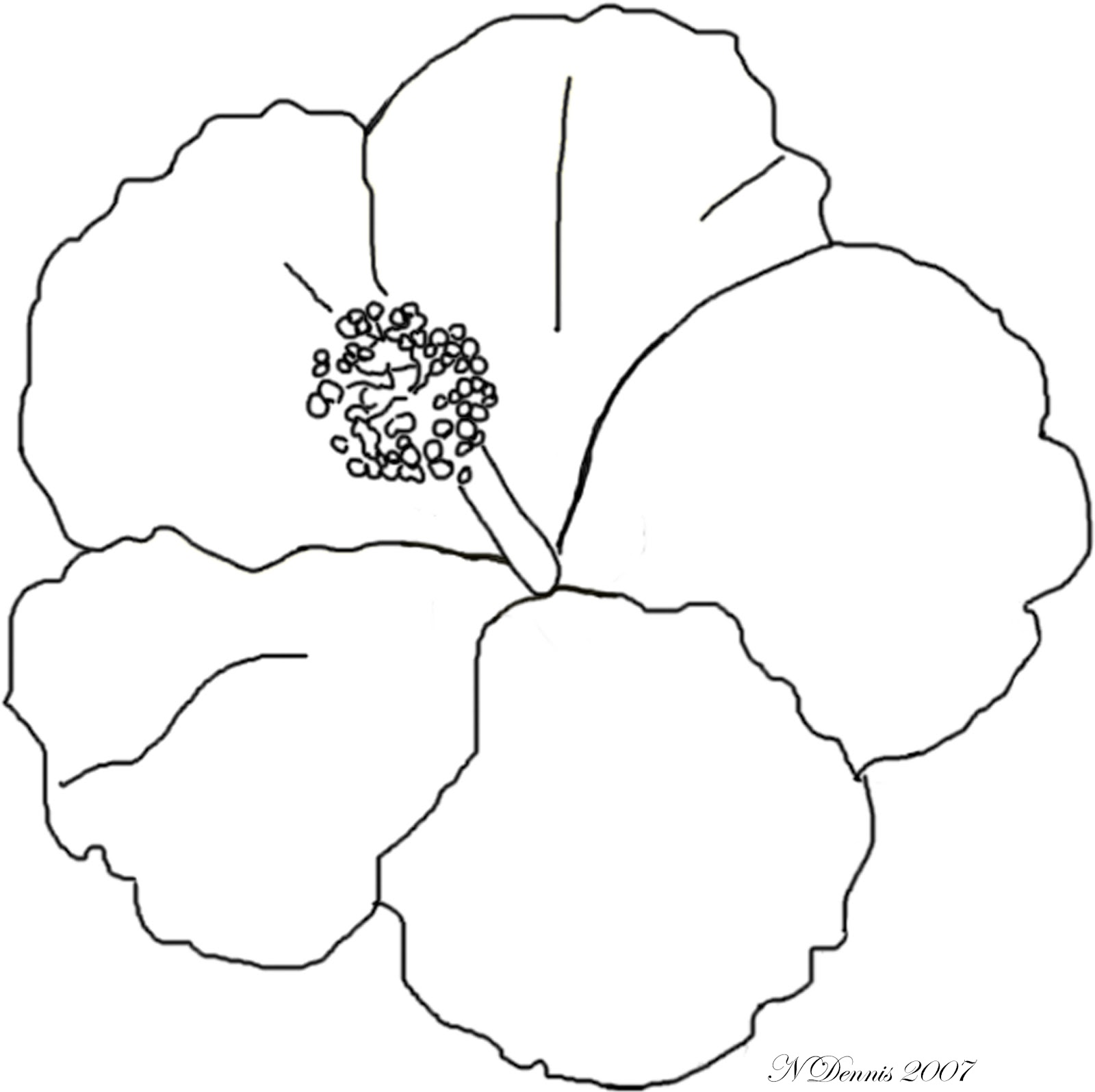 Line Art Hibiscus : Free coloring pages of hibiscus flower images