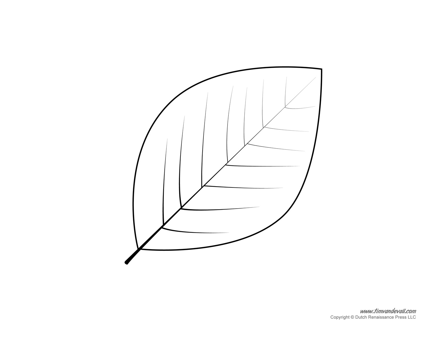 leaf template cliparts co