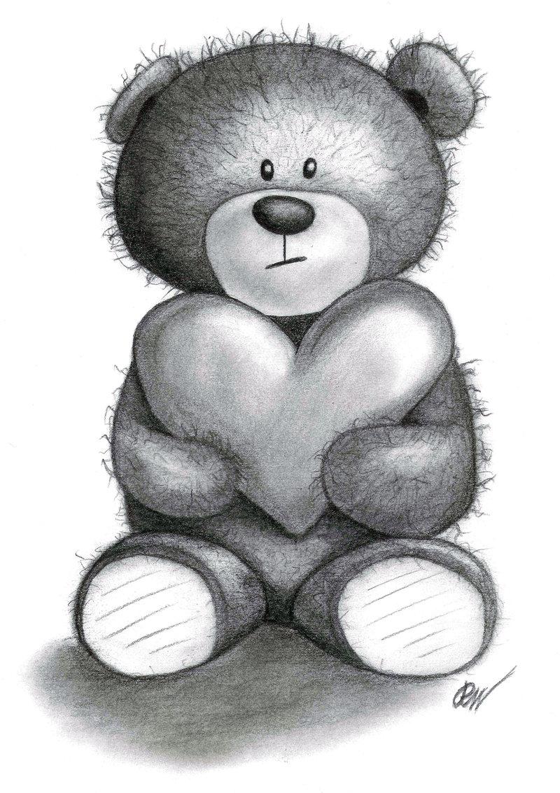 Teddy bear drawings pencil