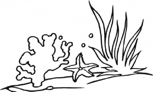 seaweed to draw Colouring Pages (page 2)