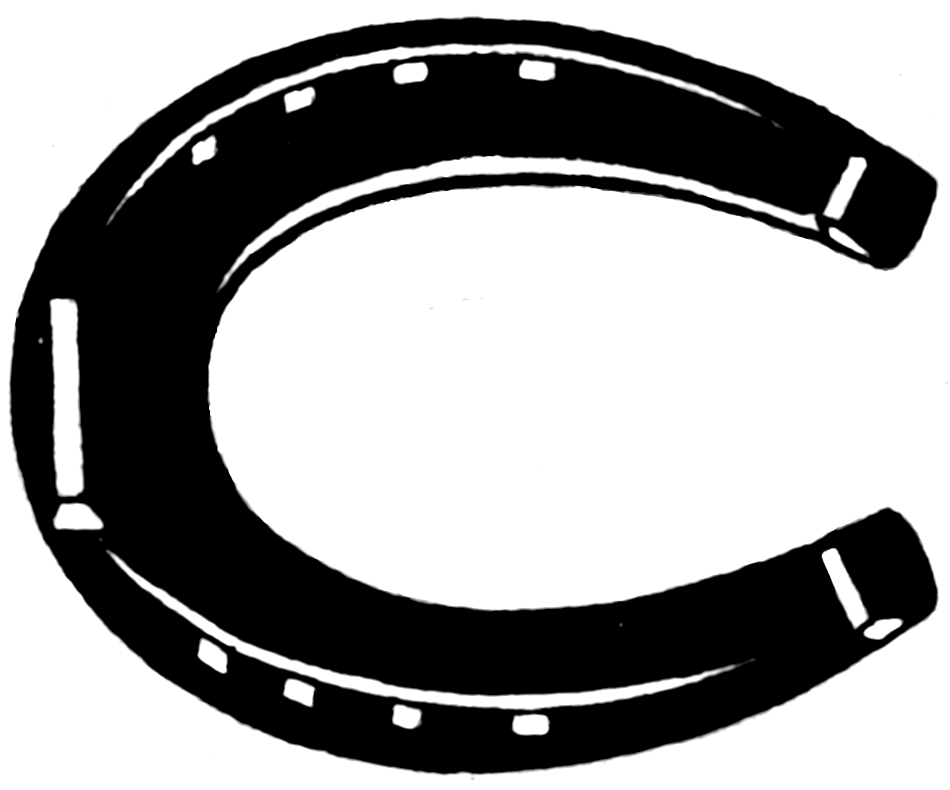 Horse Shoe Pictures