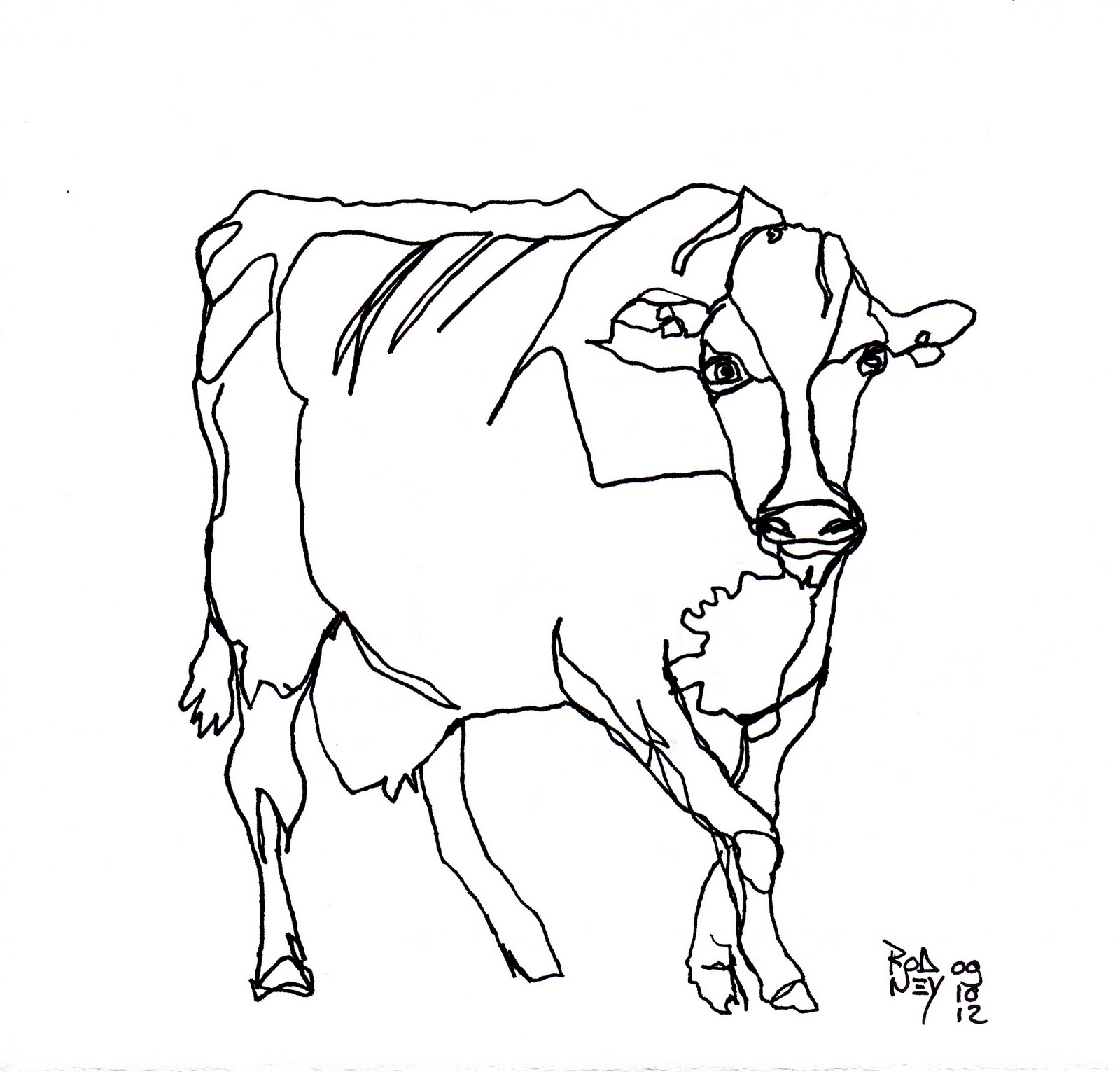 Line Drawing From Photo : Out line drawing of animals cliparts