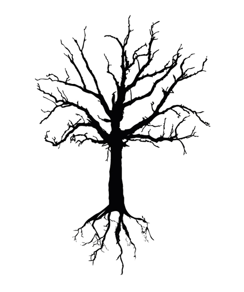 Tree Drawing With Roots - ClipArt Best