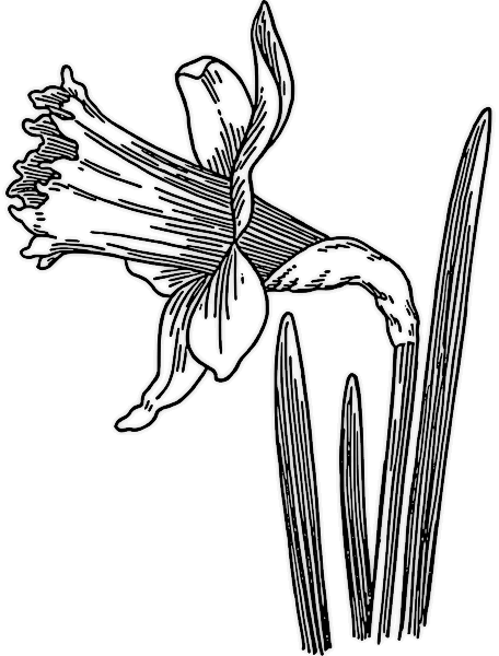 Spring Clip Art Free Black And White - Cliparts.co