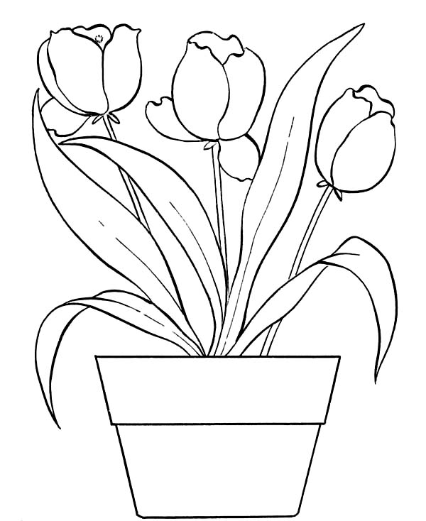 marijuana coloring pages - photo#31
