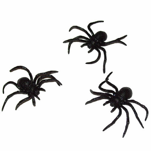 halloween spiders pictures cliparts co clip art spider web free clip art spider web background