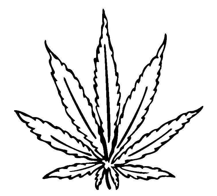 Cannabis Leaf Drawing I image - vector clip art online, royalty ...