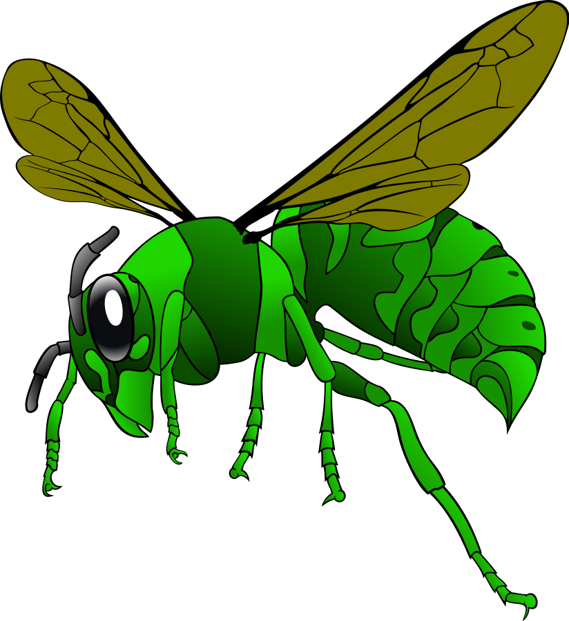 green grass clipart cliparts co hornet clipart and pride hornets clip art