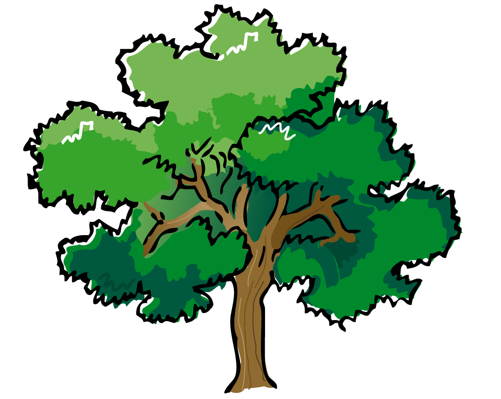 Cartoon Tree With Branches