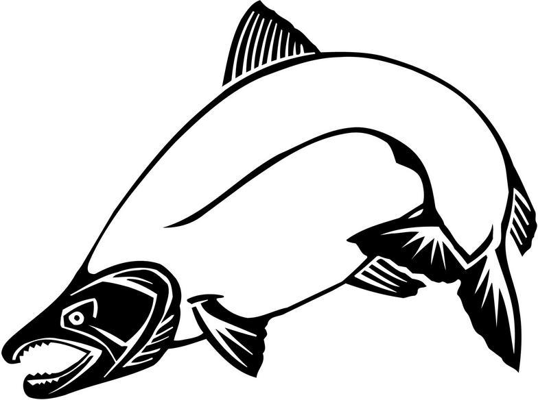 Clip Art Salmon Clip Art salmon clip art cliparts co pix for art