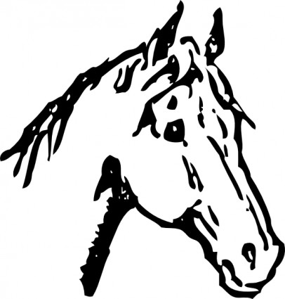 Horse Head clip art Vector clip art - Free vector for free download