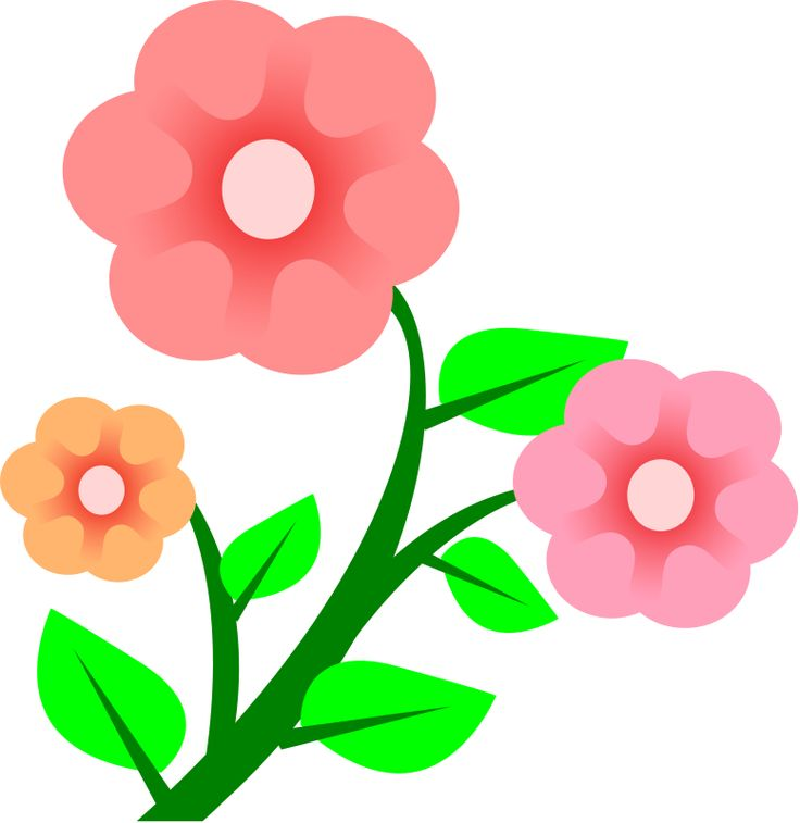 Hibiscus Flower Clip Art - Cliparts.co