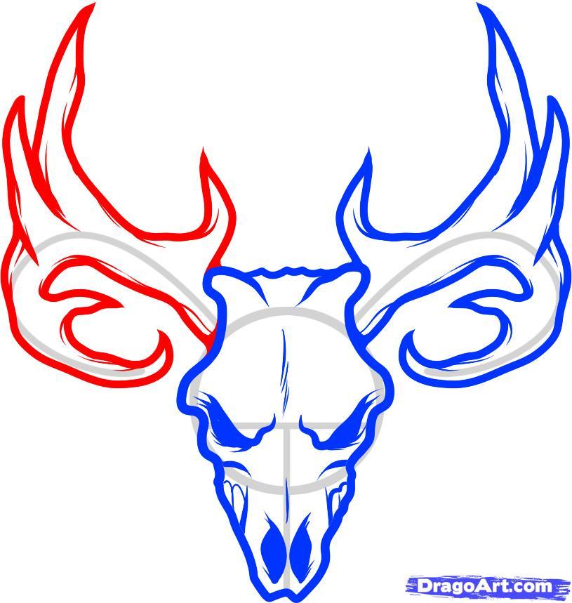 How To Draw A Deer Skull Skull Tattoo Step By Step Skulls