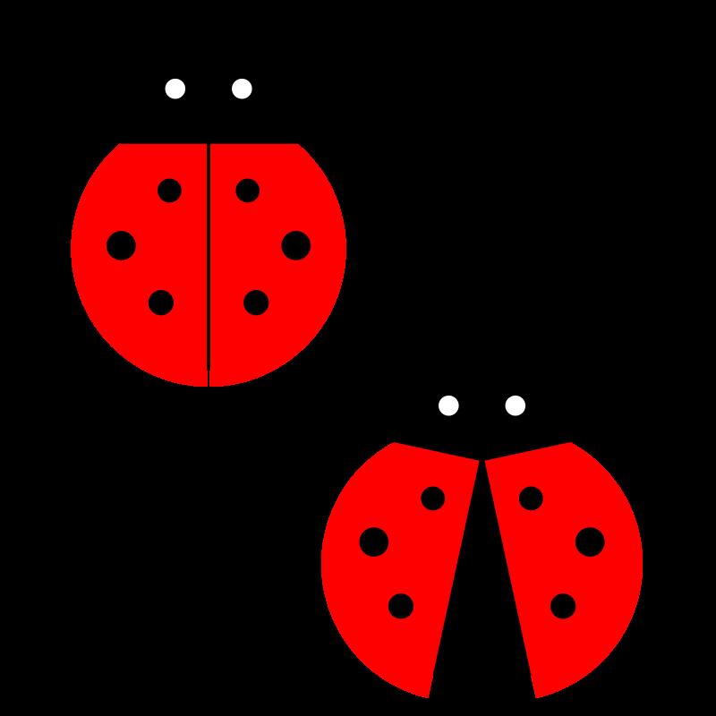 ladybug clip art images cliparts co ladybug clip art images ladybug clip art images free