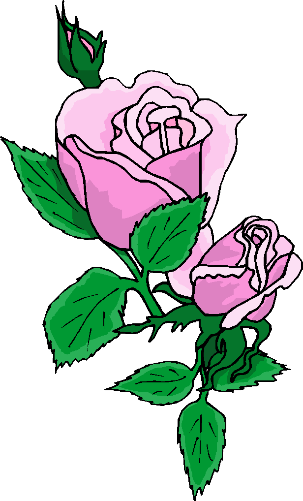 Rose Flower Animation Flash