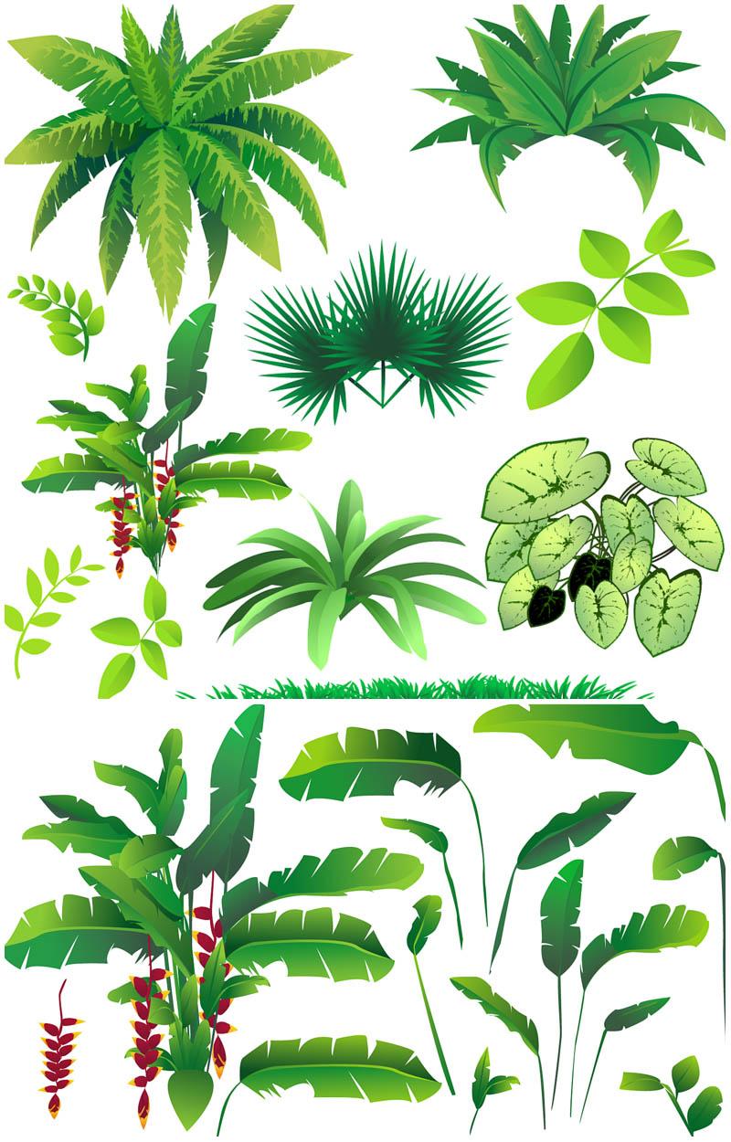 cartoon jungle trees cliparts co