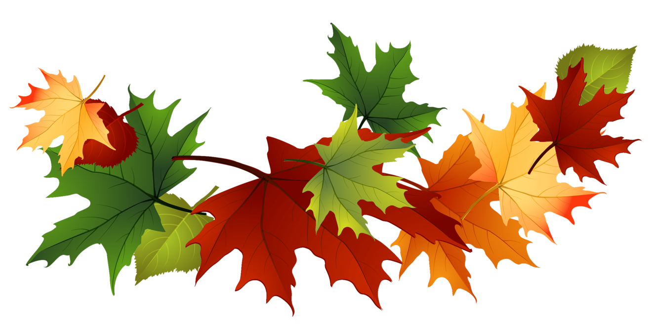 free autumn clipart images - photo #1