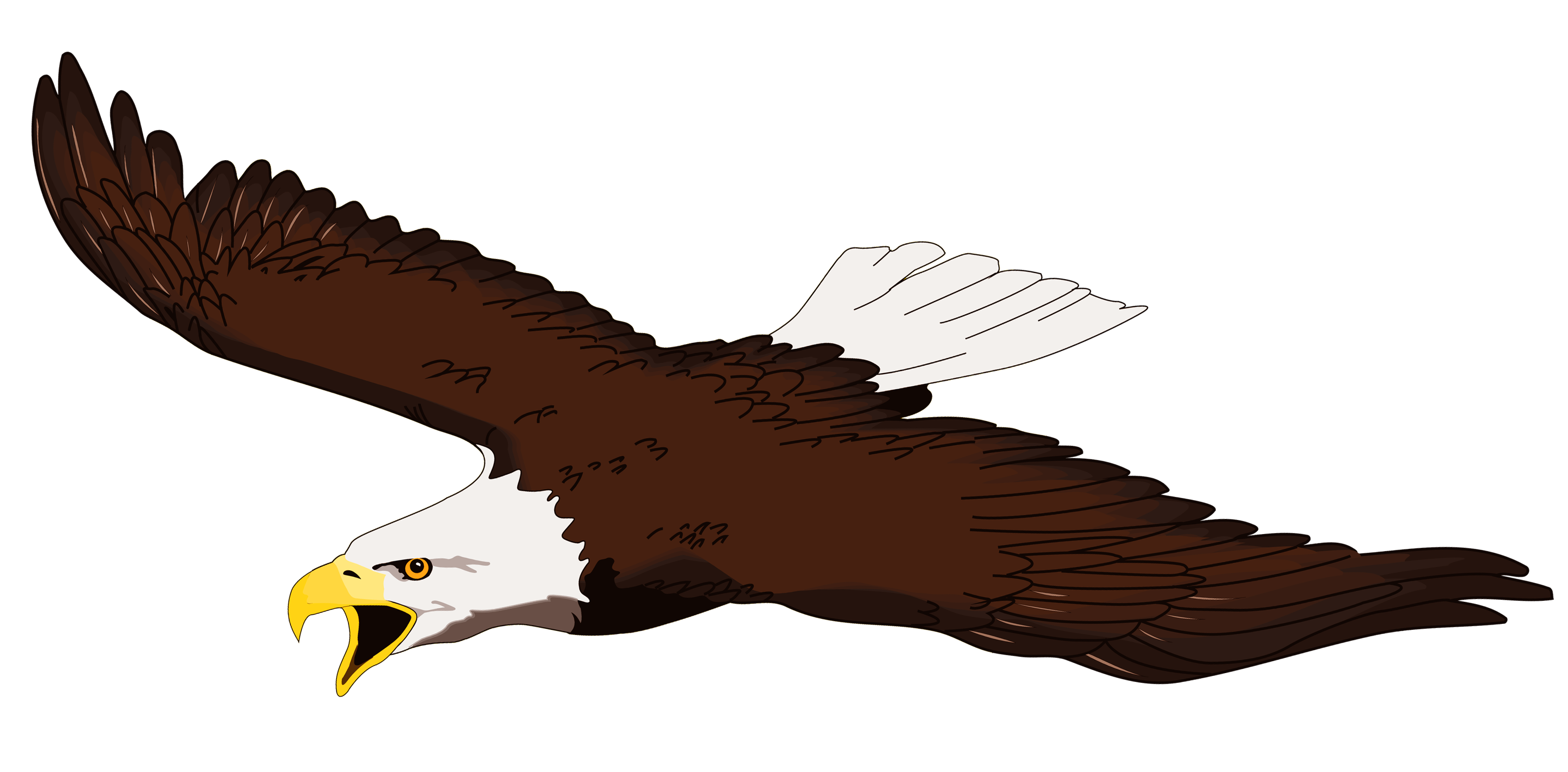 flying eagle clip art - photo #26