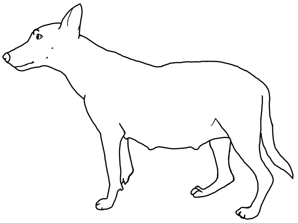 Line Drawing Of Dog : Line drawing of a dog cliparts