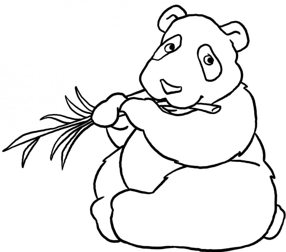 Red Panda Coloring Pages Cliparts
