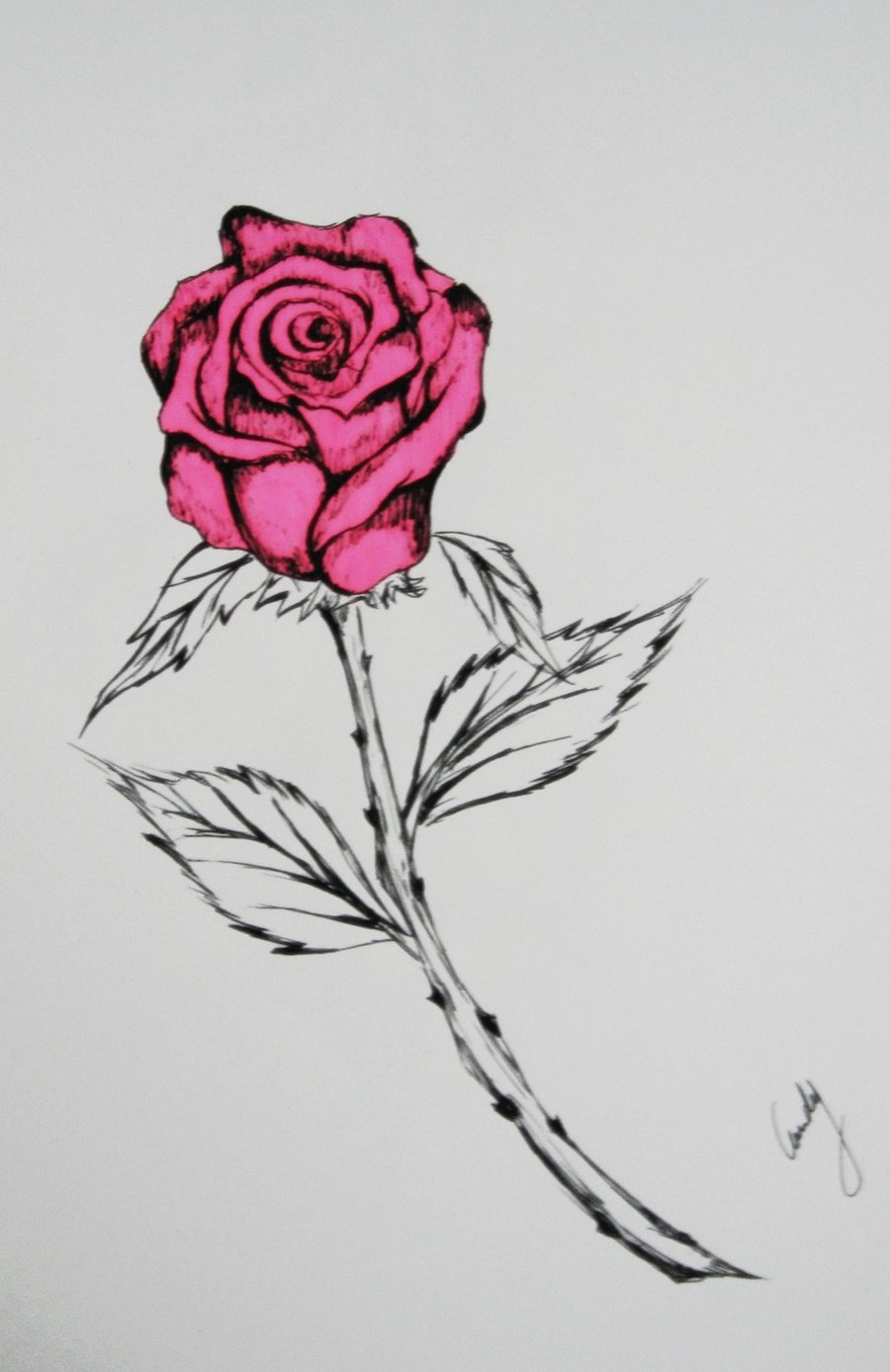 Emo drawings of roses gallery