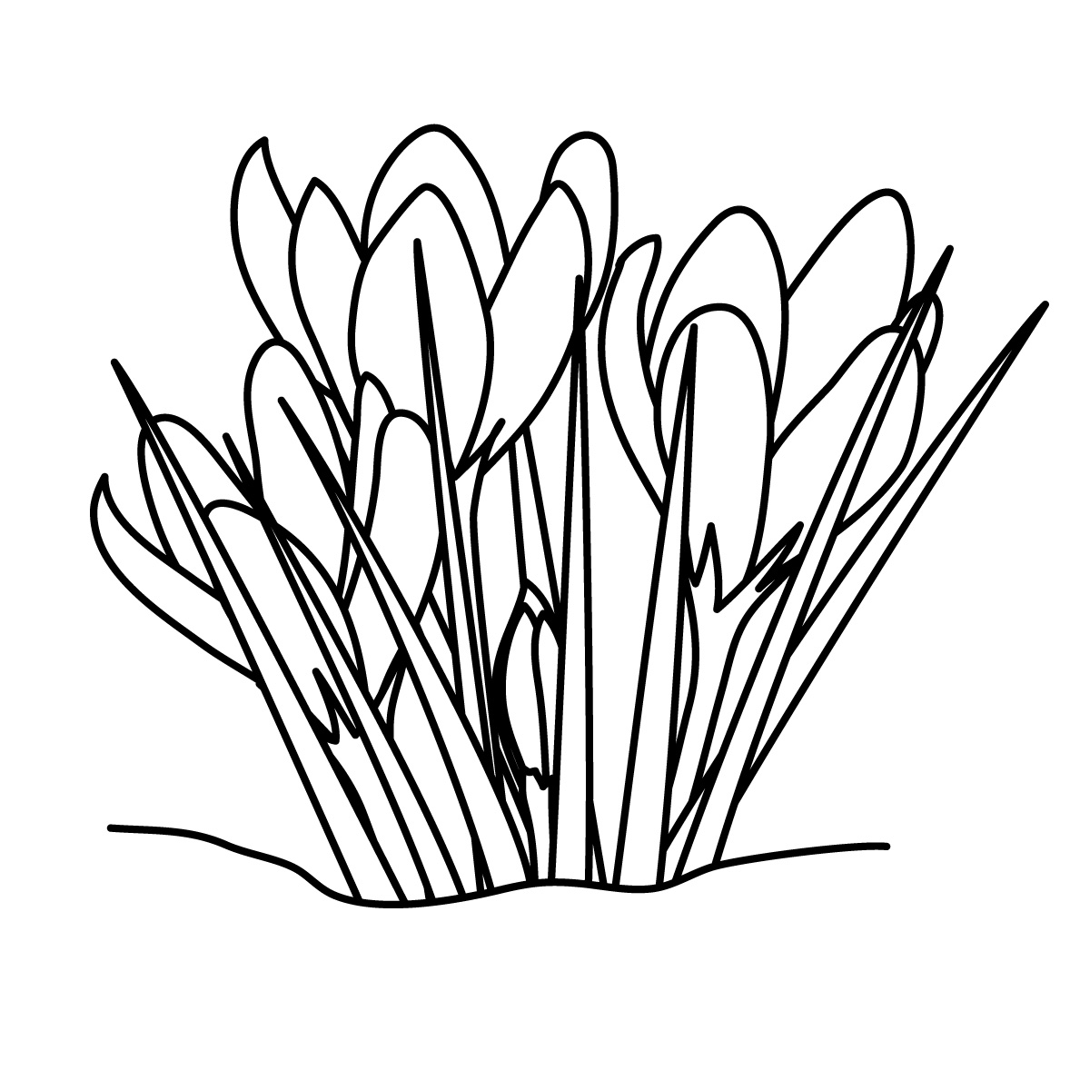 Line Drawing Spring Flowers : Flower line art cliparts
