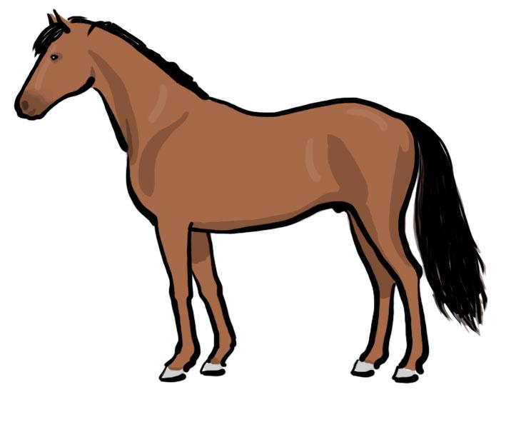 Horse Illustration Cliparts Co