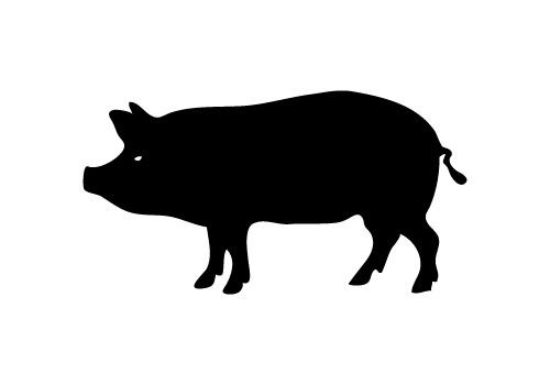Pig Silhouette Images