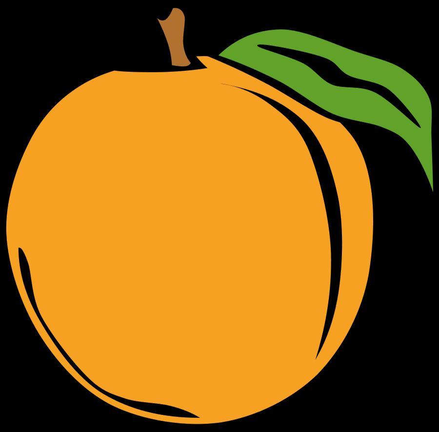 peach fruit clipart rh worldartsme com fruit clip art pictures fruit clip art pictures