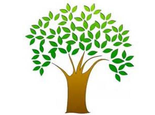 Clipart Tree Without Leaves | Clipart Panda - Free Clipart Images