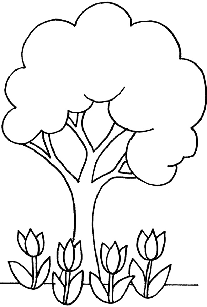 Outlines Of Trees Cliparts Co Children S Tree Coloring Pages