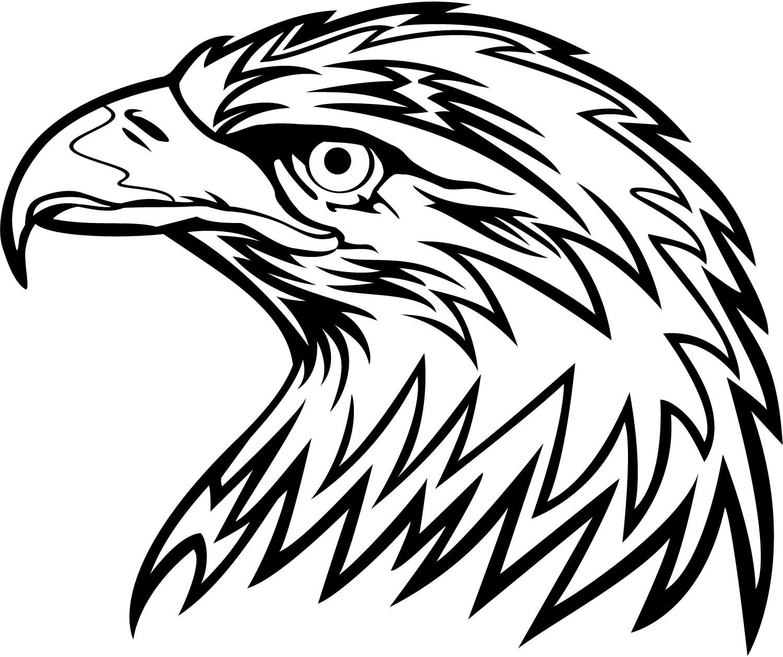 Eagle Clipart Ma   Eagle Head Vector Png