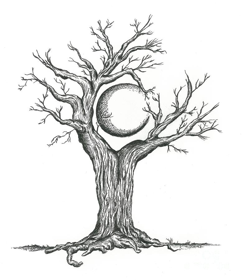 D Line Drawings : Black and white tree drawing cliparts