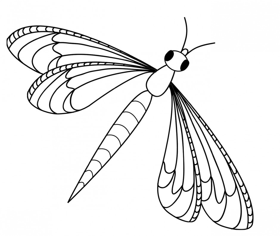 Dragonfly vector for Dragonfly coloring book pages