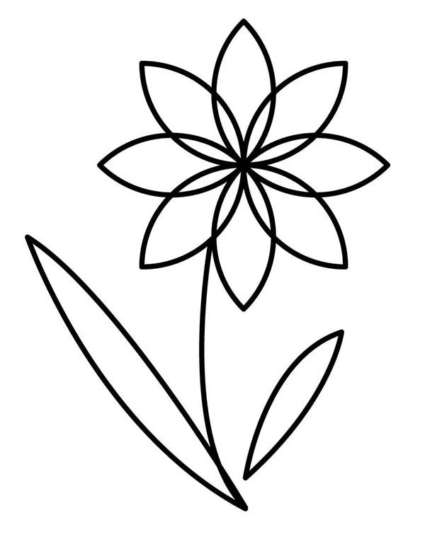 Flower Outline Cliparts Co