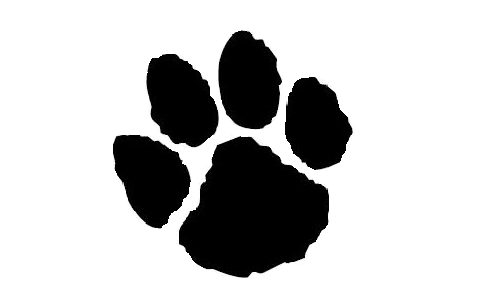Panther paw background