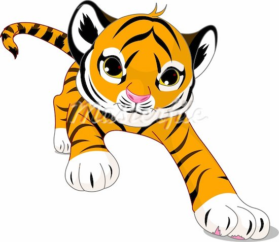 how to draw a cartoon tiger cub