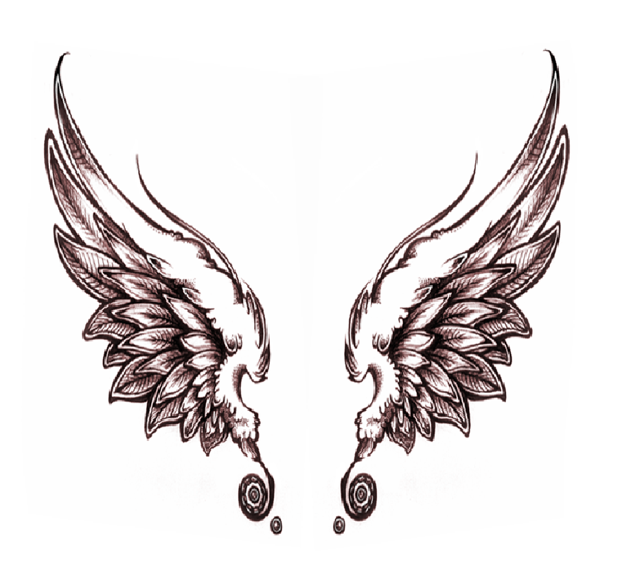 Angel Wing Sketches