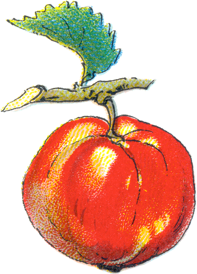Free Apple Clip Art For Teacher - Miss Mary's Victorian and ...