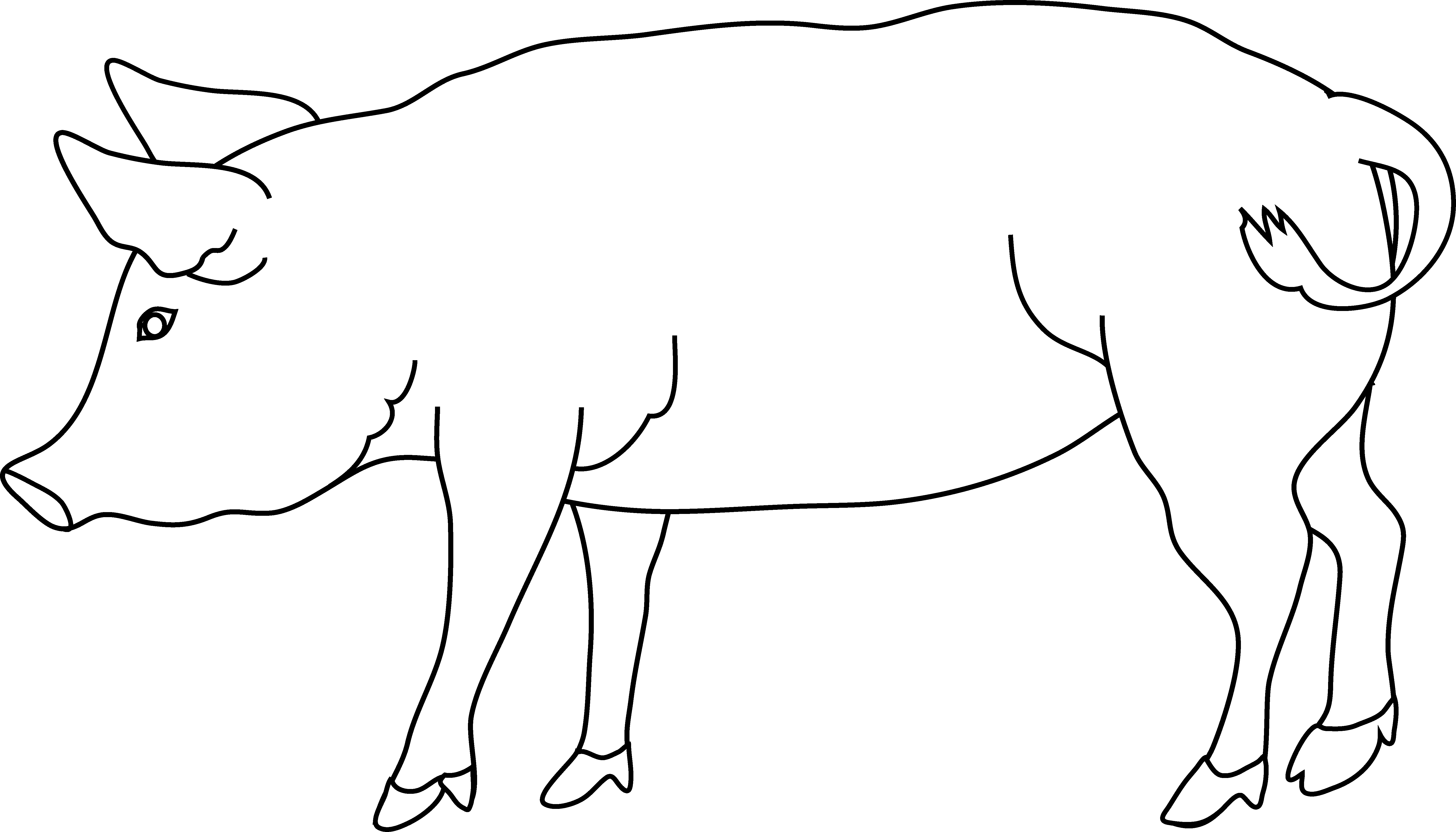 Simple Line Drawing Pig : Outline of a pig cliparts
