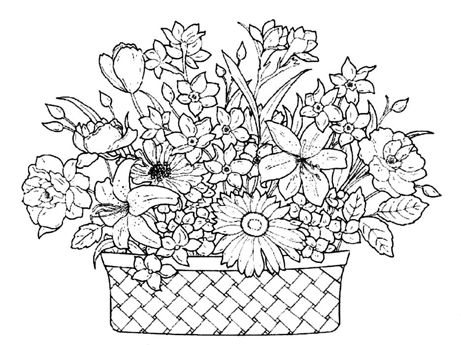 Flower Basket Drawing Drawing Of Basket Of F...