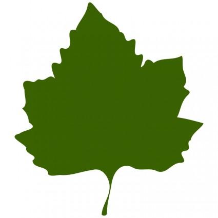 Grape Leaf Clip Art
