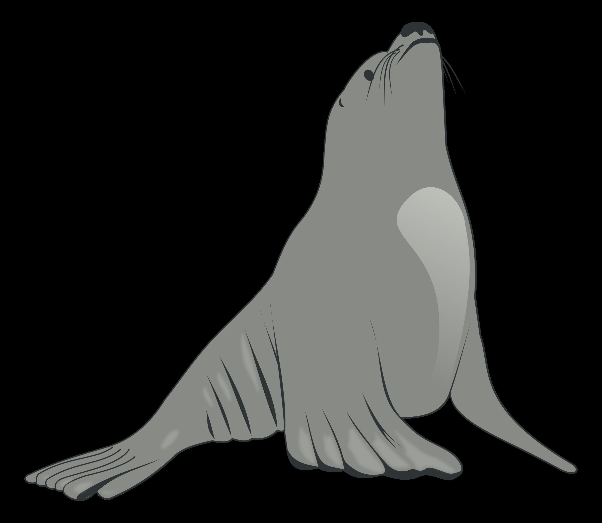 Sea Lion Clip Art | Clipart Panda - Free Clipart Images