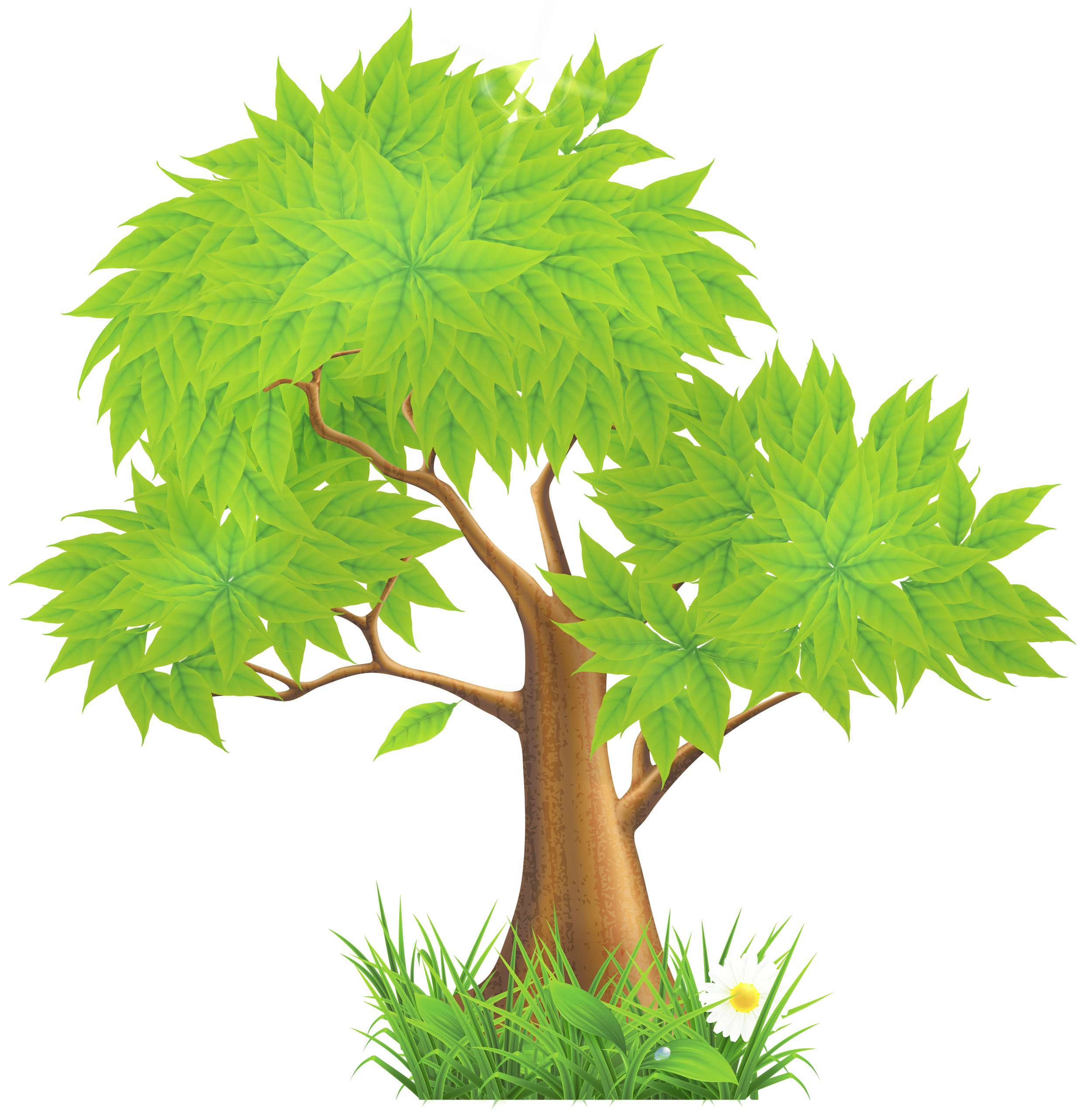 63 images of Clip Art Pine Trees . You can use these free cliparts for ...